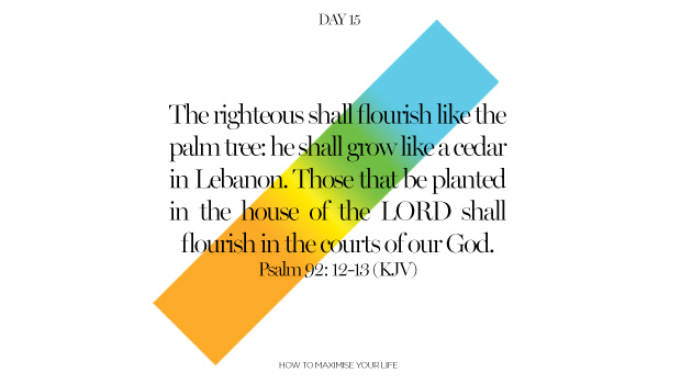 Day 15: How to Flourish in Life