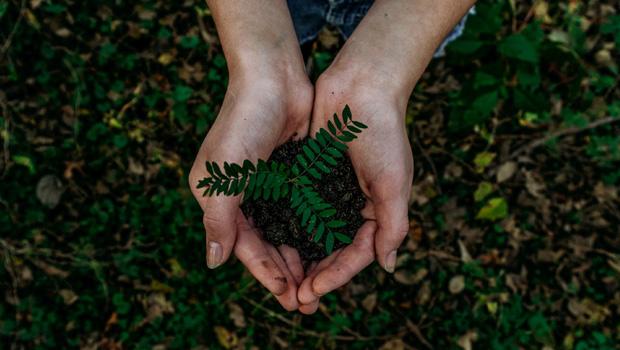 Wellbeing: Flourishing despite the challenges